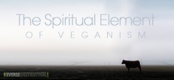 Is Veganism a Spiritual Pursuit?